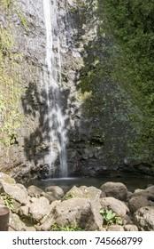 Manoa Falls O'ahu hawaii