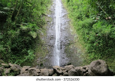 Manoa Falls in Honolulu, Oahu, Hawaii