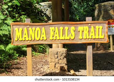 Manoa Falls Trail Hike Oahu Hawaii