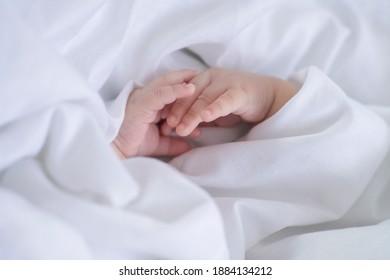 Manos de bebé recién nacido envueltos en sabana