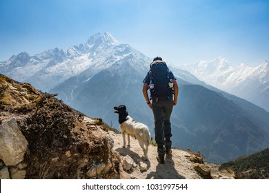 Man's Best Friend in the Himalayas