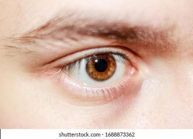 Man's eye Close Up Of A Man Eyes, macro