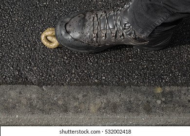 Man's foot stepping into a pile of dog poop on a pavement (sidewalk) in a British street.