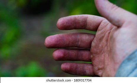 a man's hand with calluses from work