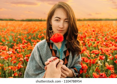 Man's hand giving poppy flower to beautiful young woman in summer meadow, point of view.