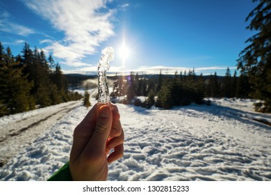 Man's hand holding icicle during sunny day in winter country