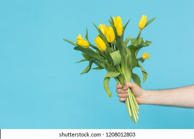 Man's hand reaching out a bunch of yellow tulips on blue background with copy space
