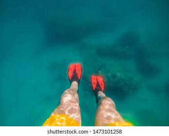 mans legs in red flippers underwater snorkeling. underwater view