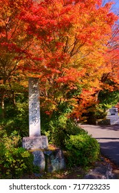"Manshuin Temple mountain path was established in the 8th century and known for its beautiful autumn colors. stone word in the image shows""Manshuin relics"" in Japanese."