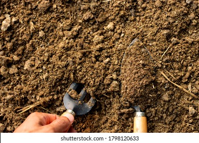 Manure or animal manure for use in farming or agriculture.