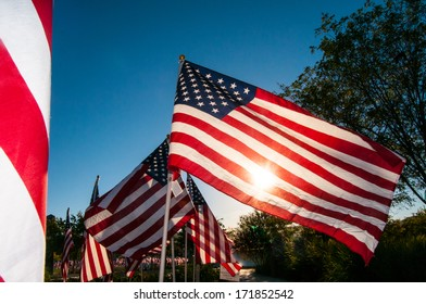Many American Flags waving in the breeze