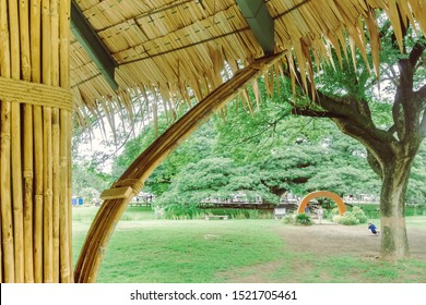 Many bamboo bindings are tied together with hemp ropes to be used as pole for resting cottage. Selective focus on hemp ropes.