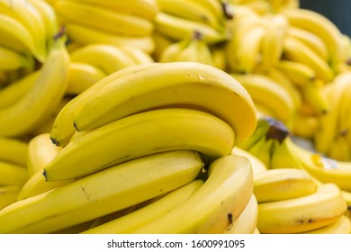 Many bananas are in the store