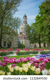 Many beautiful flowers and the Church of Our Lady (Dresden) taken from Brühlschen Garten in Spring, Dresden, Germany, April 29th 2018