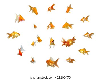 Many beautiful friendly goldfishes isolated on white background (can be used individually)