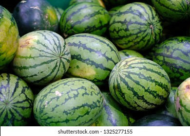 Many big sweet green watermelons sell on market, Recently harvested watermelons are stacked in a pile and ready to go to sale at the market.