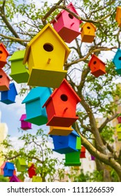 Many birdhouses on a tree at city