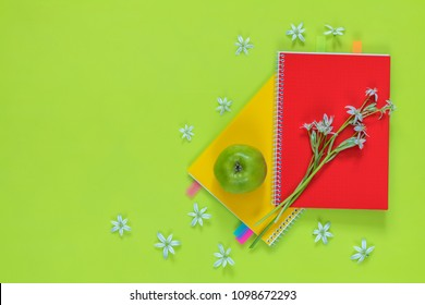 Many blossom flower heads ornithogalum and red and yellow notebooks with bouquet, green juicy apples on bright green surface.