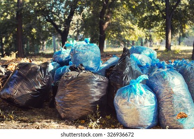 Many blue and black garbage bags with leaves on the ground. Cleaning of autumn foliage in park. Horizontal photo