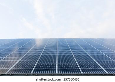 Many blue solar panels. Renewable energy.