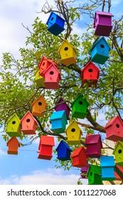 Many bright colored birdhouses on a mandarin tree at city