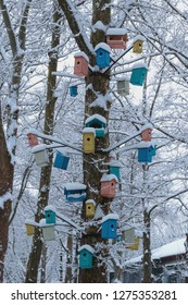 Many bright, painted in red, yellow, blue and other colors, birdhouses, for birds and feeders on the tree. Houses for birds in the winter under the snow on the tree. bird protection