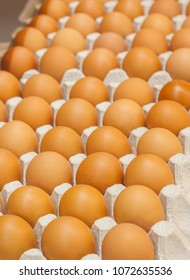 Many brown eggs in boxes in store close up.
