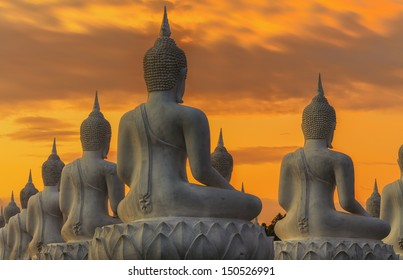 Many Buddha statue on sunset