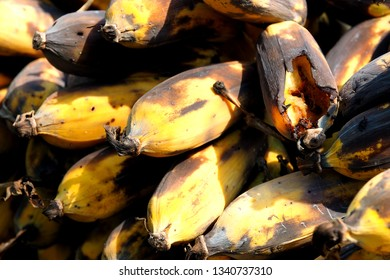 Many bunches of rotten bananas are wasted for human. However they are edible by animals.  It shows food management; over supply, waste and recycle products. In the end, they are natural fertilizers.