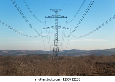 Many cables of electric lines