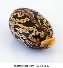Many castor beans  (Ricinus communis), seeds