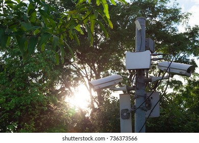 Many CCTV cameras are installed inside the park.