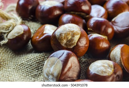 many chestnuts close-up on a table in the autumn