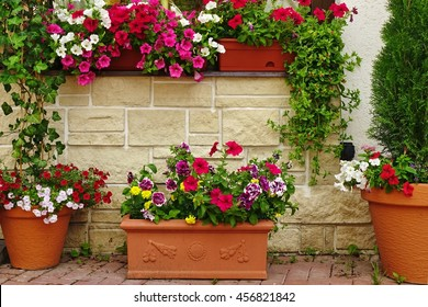 Many Clay Flowerpots With Blooming Plants At  The Rustic Stone Wall With Window. Ornamental Backyard Garden. Home House Decoration.