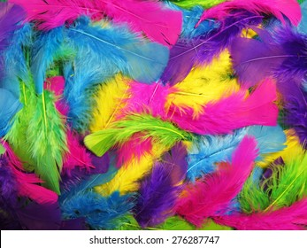 Many colored soft feathers. Texture. background