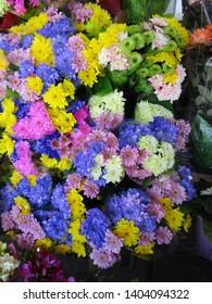 Many colorful Dahlia flower bouquets April 2019