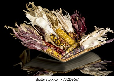 Many colorful ears of Indian corn on a plate