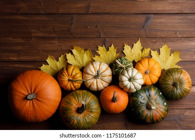 Many colorful pumpkins and maple leaves frame on wooden background , autumn harvest, Halloween or Thanksgiving concept
