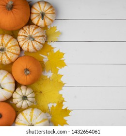 Many colorful pumpkins and maple leaves frame on wooden background , autumn harvest , Halloween or Thanksgiving concept