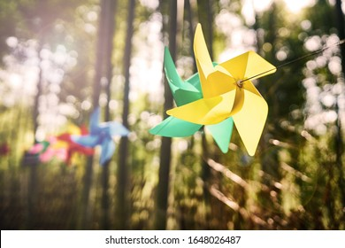 Many colorful toy pinwheel in the woods, the sun shines on the colorful pinwheel