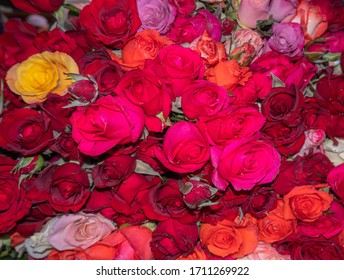 many colors of red and pink roses for sale in a Mexican market