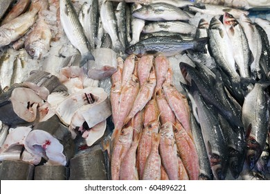 many different kinds of fresh sea fish on display on marketstall in the netherlands