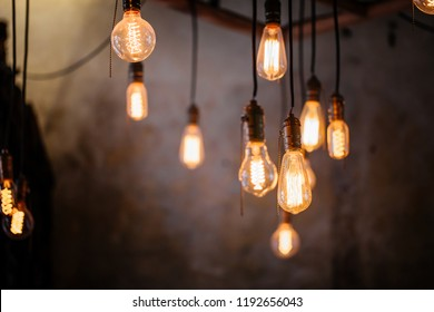Many different vintage light bulbs hanging from ceiling, coffee shop interior