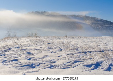 Many dried plants rise out of a snowdrift, and covered with snow cap. Some tiny houses on the slopes of the mountains in the blurry background. Sunny frosty day with the mist in  mountains in winter.
