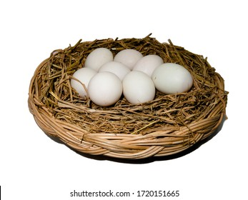 Many duck eggs lay on a straw  on a white background