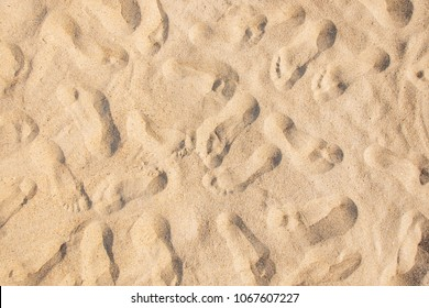 Many footprints on sandy beach background, texture, top view.