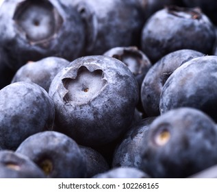 many fresh blueberries. food background