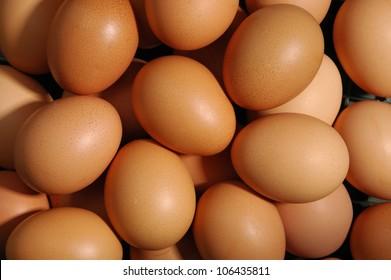 many fresh brown eggs