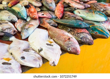 Many fresh colourful exotic fish caught by fisherman and sold at the local fish market by the ocean on tropical, beautiful caribbean island
