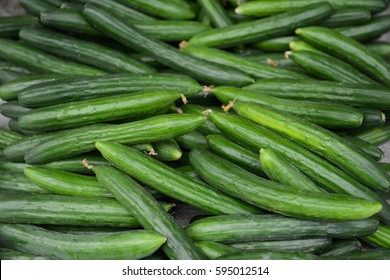 Many fresh cucumbers close up for background